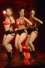 Toronto Burlesque Festival 2017 - Red Carpet Reveal